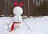Upsidedown Snowman